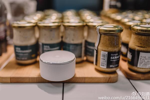 Xiaomi Bluetooth Speaker (7)